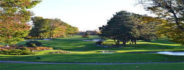 Playing Golf in Auckland